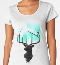 Northern Lights Women's Premium T-Shirt