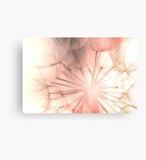 Pink Dandelion Macro Nature Photography Canvas Print