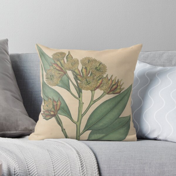 Botanical illustration: Eucalyptus robusta  – State Library Victoria Throw Pillow