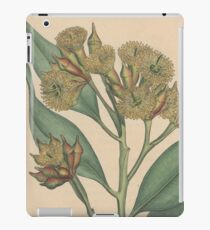 Botanical illustration: Eucalyptus robusta  – State Library Victoria iPad Case/Skin