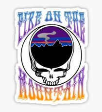 Grateful Dead Patagonia Fire on the Mountain Lot Design Sticker