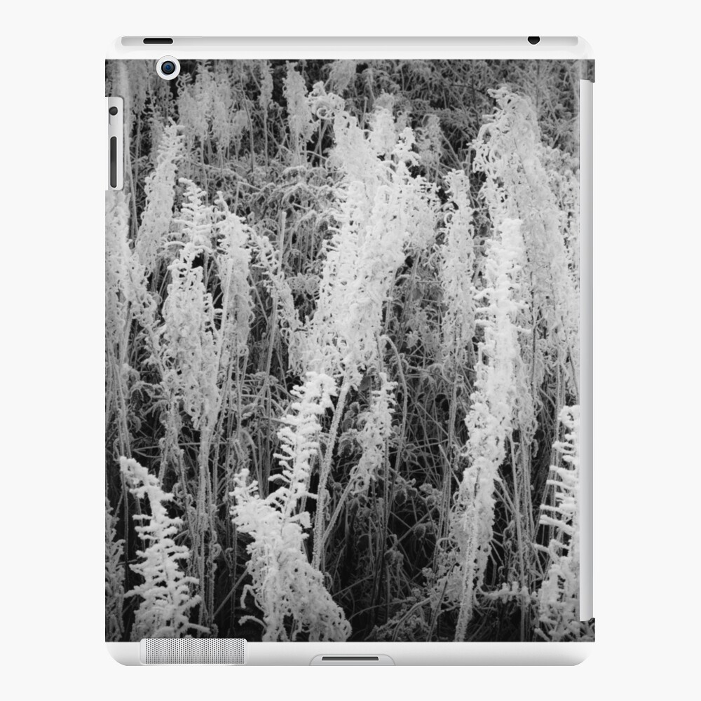 Frosty monochrome iPad Case & Skin