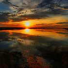 Sunset on the Levee by Barbara  Brown