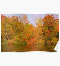 Fall Reflections Poster