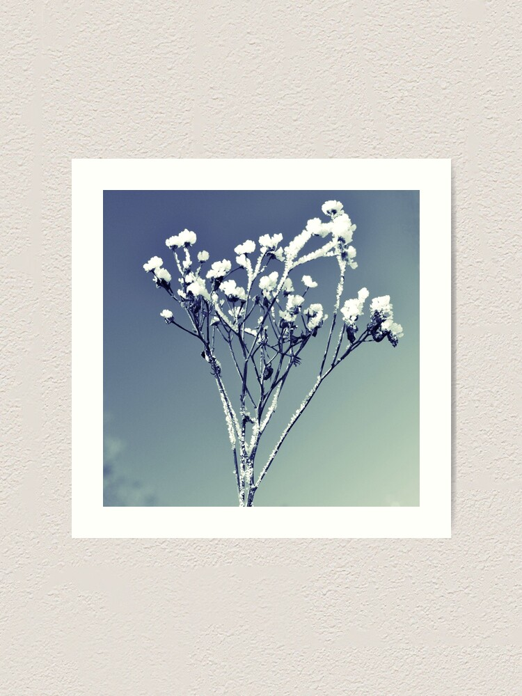 Alternate view of Winter scene Art Print