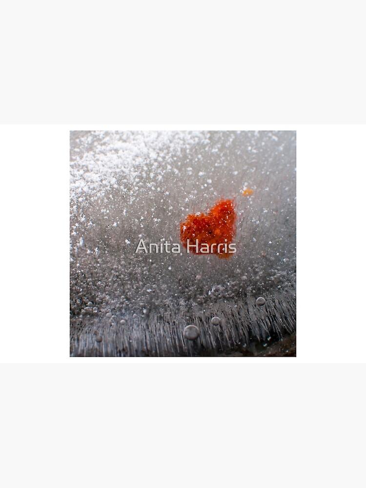 Frozen Heart by plasticflower
