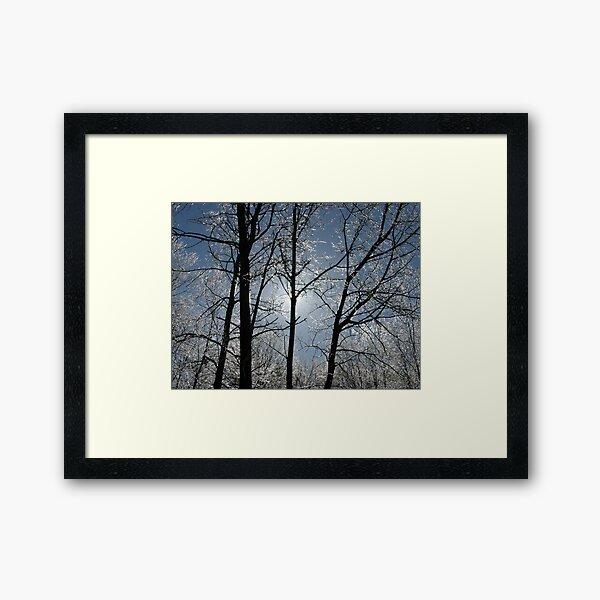 Mother Nature's Crystals Framed Art Print