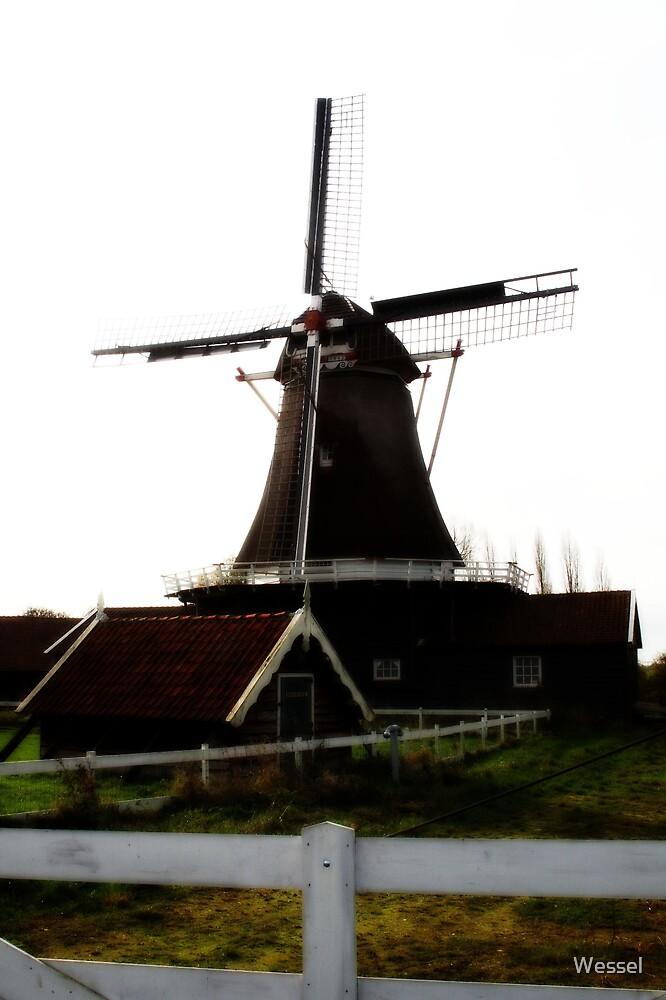 Windmolen, Deventer, Nederland by Wessel