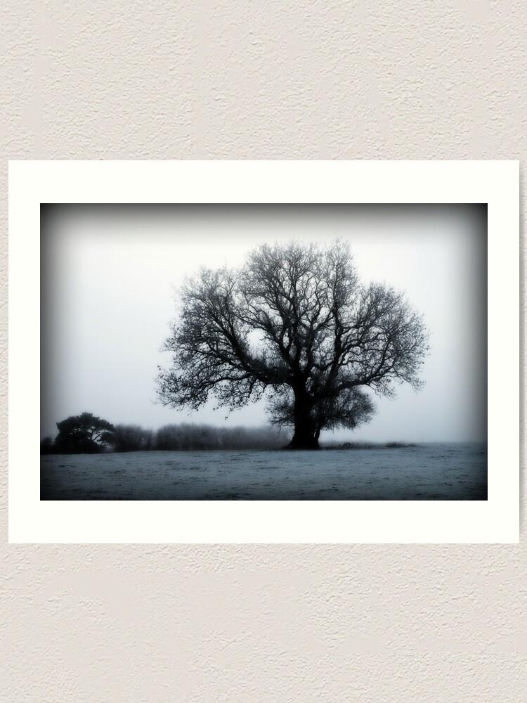 Alternate view of Winter Tree Art Print