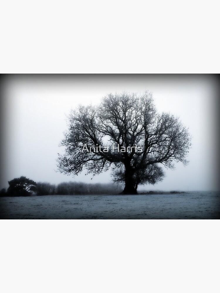 Winter Tree by plasticflower