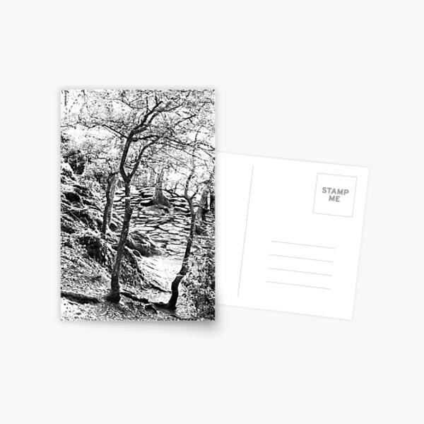 Brocéliande Postcard