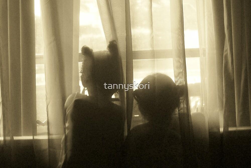 i love the window  by tannyskori