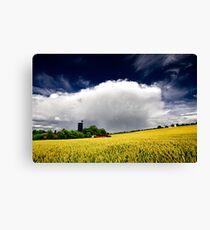 farm and wheat field Canvas Print