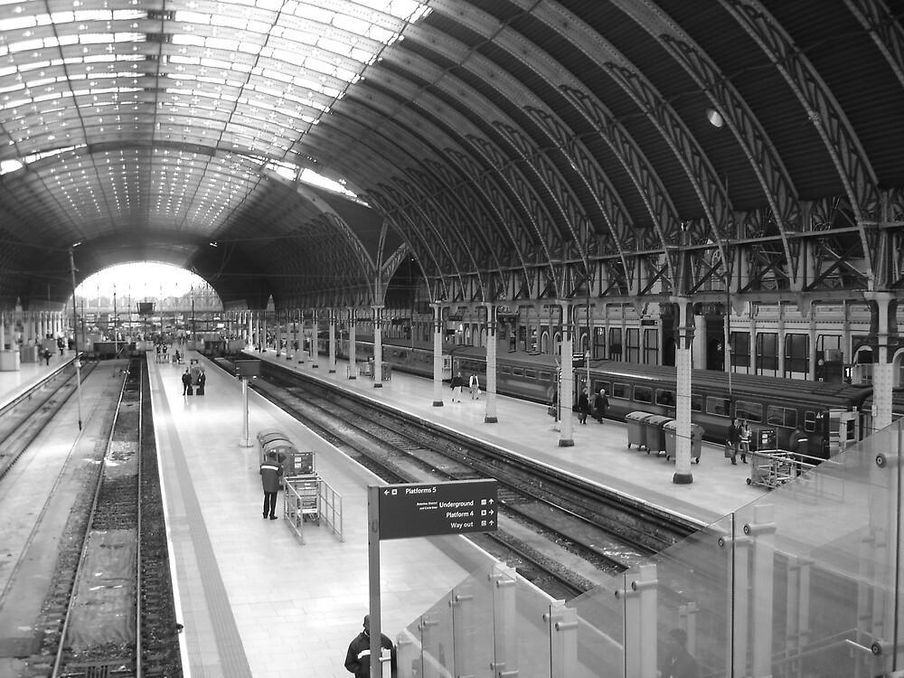 Paddington Train Station  by crypticrob