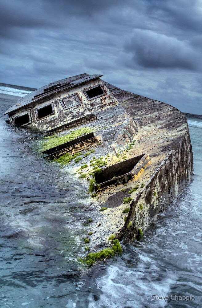 Washed Ashore by Steve Chapple