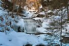 Mohican Falls Surrounded By Winter White by Gene Walls