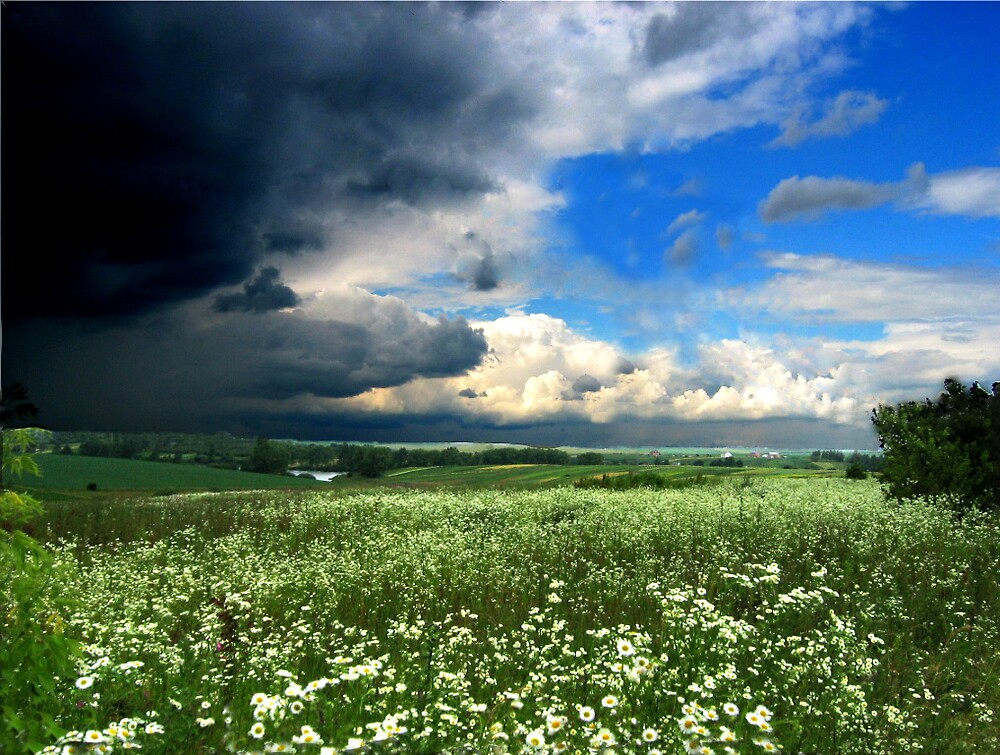 Before thunderstorm by TarasKokovsky