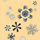 Snowflakes by Cassia Beck