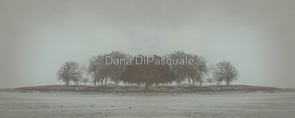 I'll Walk You Home by Dana DiPasquale