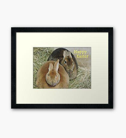 Easter Bunnies Framed Print