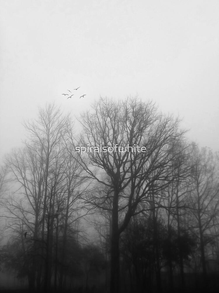 solitude by spiralsofwhite