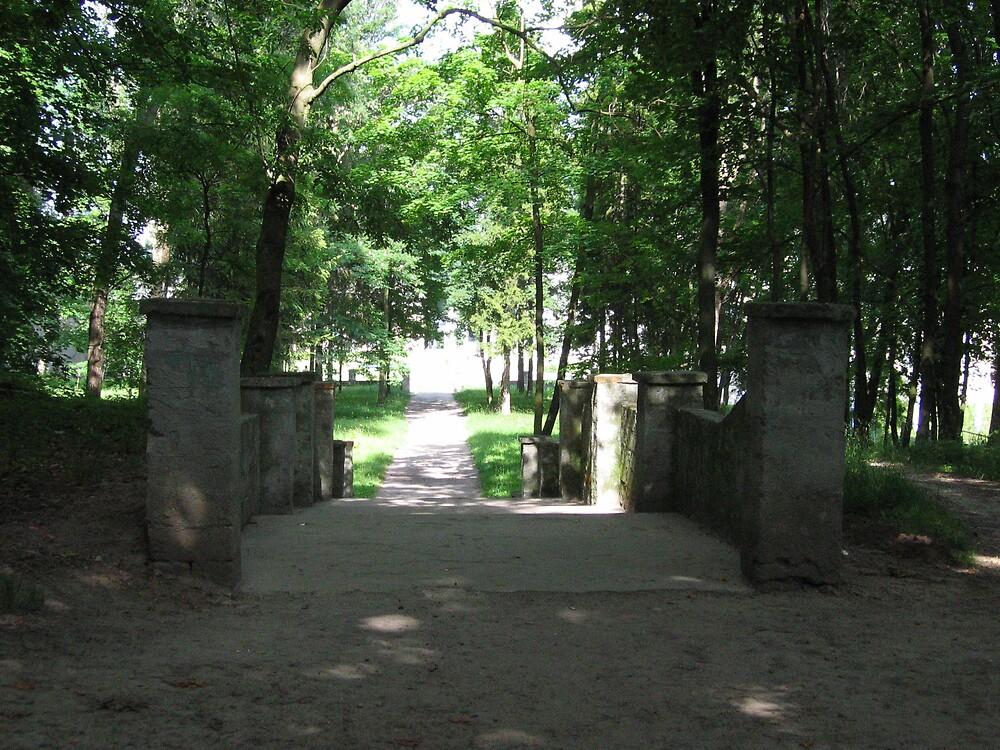 Old park alley by TarasKokovsky