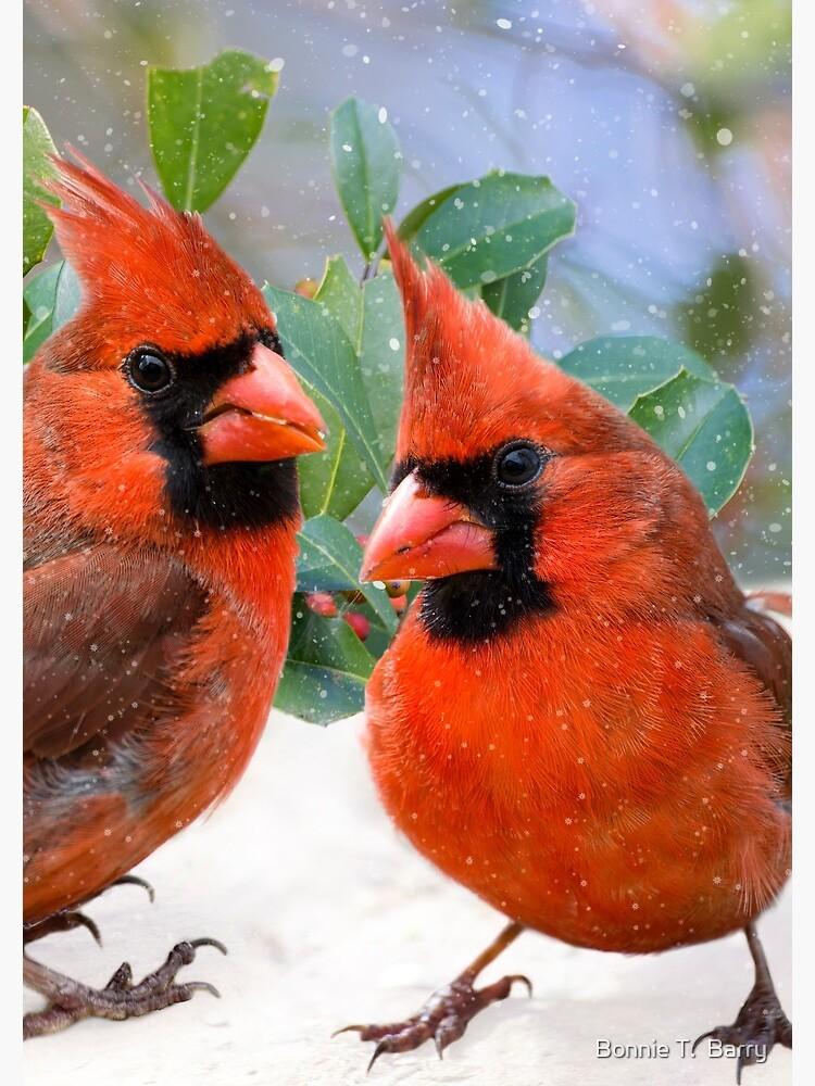 Christmas Cardinals Images.Merry Christmas Cardinals Spiral Notebook
