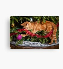 Naughty Christmas Cat Canvas Print