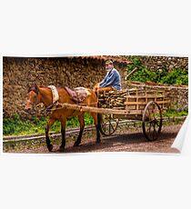Man Riding Horse Cart, Pankisi, Republic of Georgia Poster