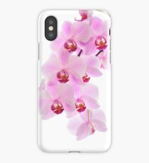 Pink orchid, closeup shot, white background iPhone Case/Skin