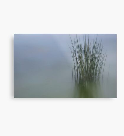 Water Bound Metal Print