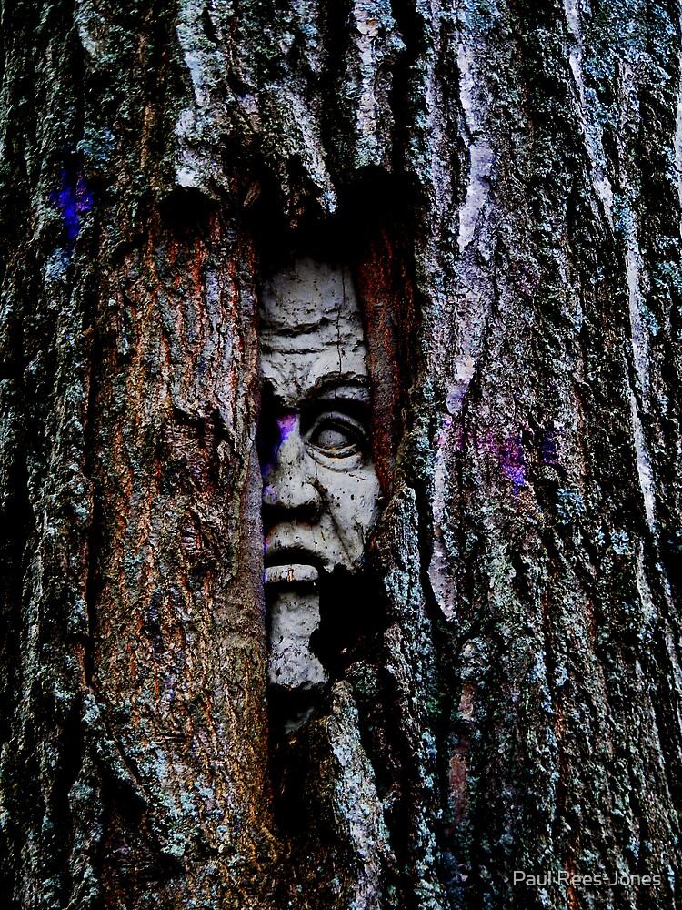Frozen in Wood. by Paul Rees-Jones