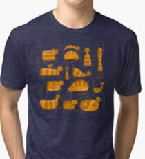 Cute orange cats Tri-blend T-Shirt