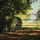 The Secret Gate by Sarah Vernon