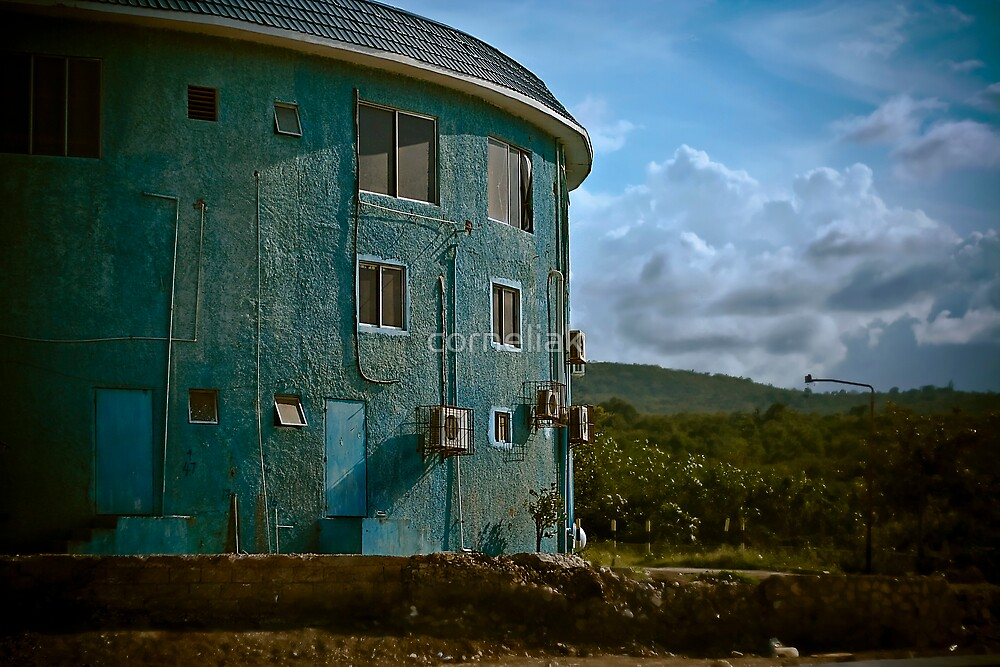 Jamaican Landscapes  by corneliak