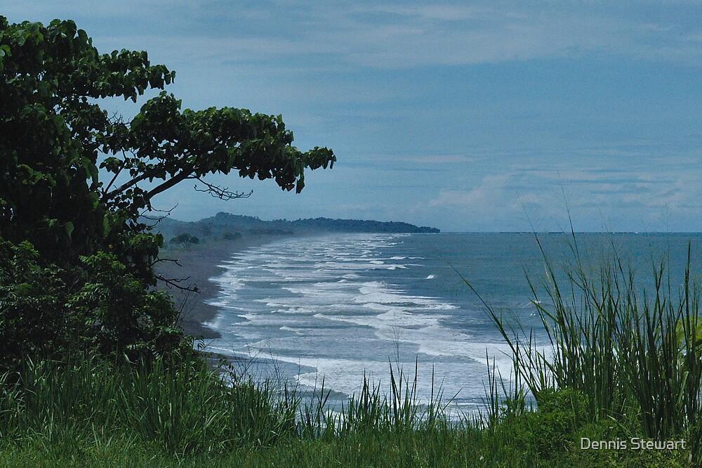 Costa Rico Coastline by Dennis Stewart
