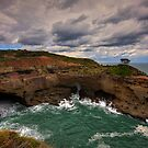 Snapper Point by Mark Snelson