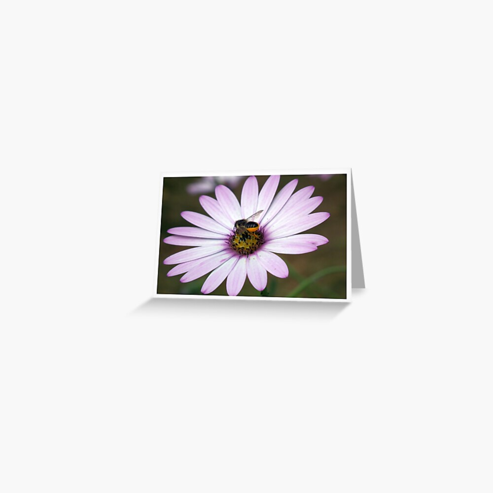 Flower with Bee Greeting Card