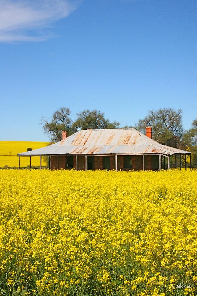 Abandoned Farm House by trekka