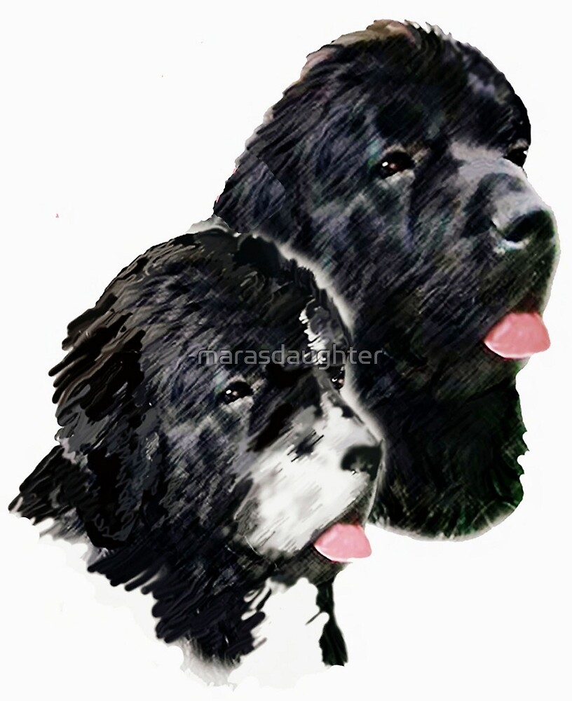 newfoundland painting by marasdaughter