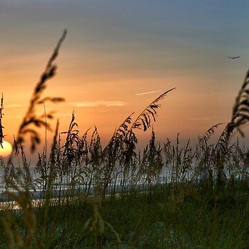 Sunset On Anna Maria Island by adrianbrockwell