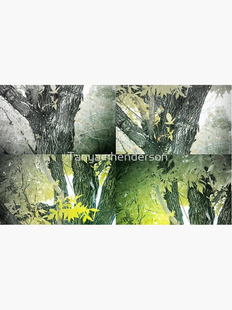 Seasons by Tanyamhenderson