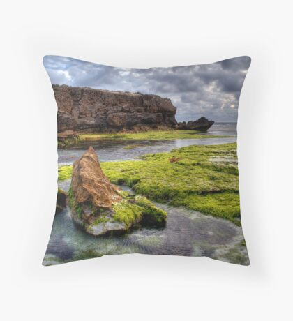 Salad Bowl! Throw Pillow
