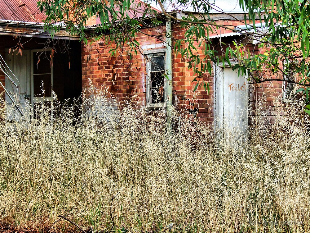 The old house by julie anne  grattan