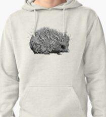 Leaf Hedgehog Pullover Hoodie
