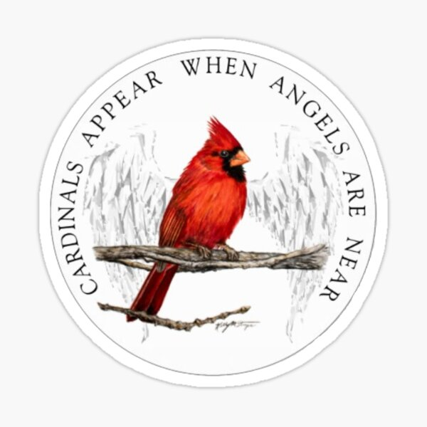 Cardinals Appear When Angels Are Near Sticker