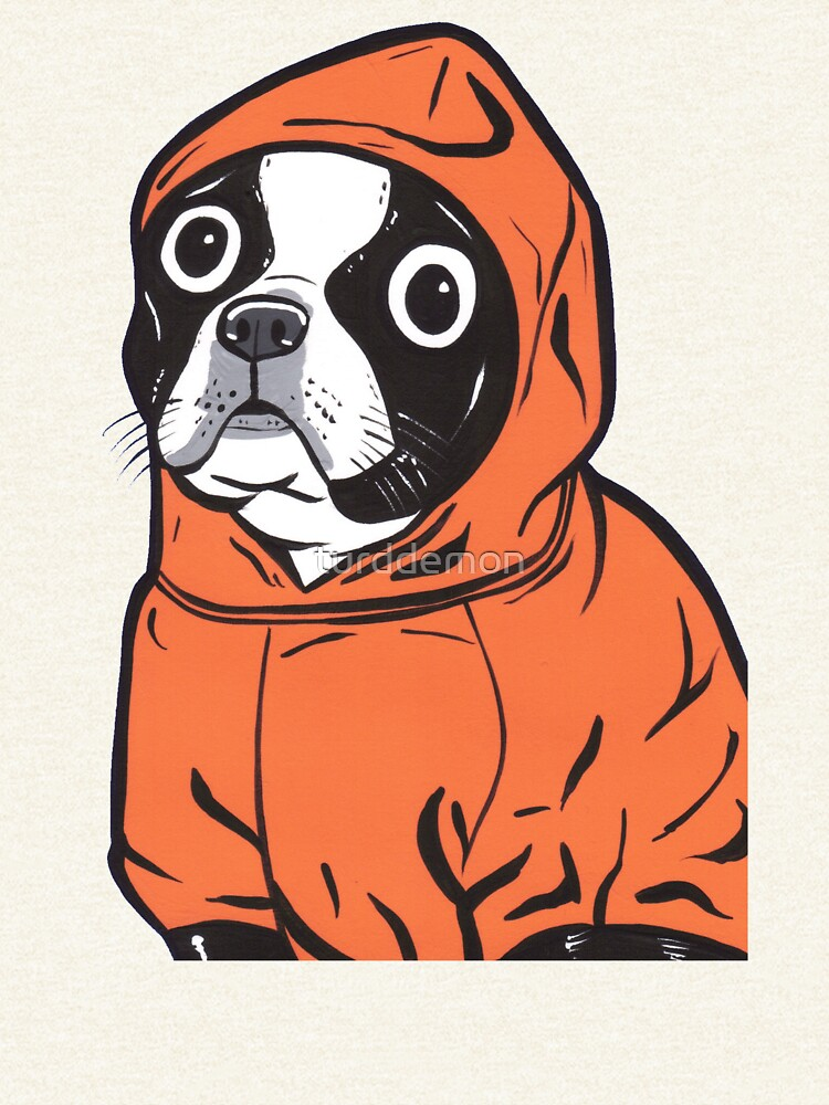 Boston Terrier Orange Hoodie by turddemon