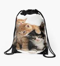 Cats Drawstring Bag