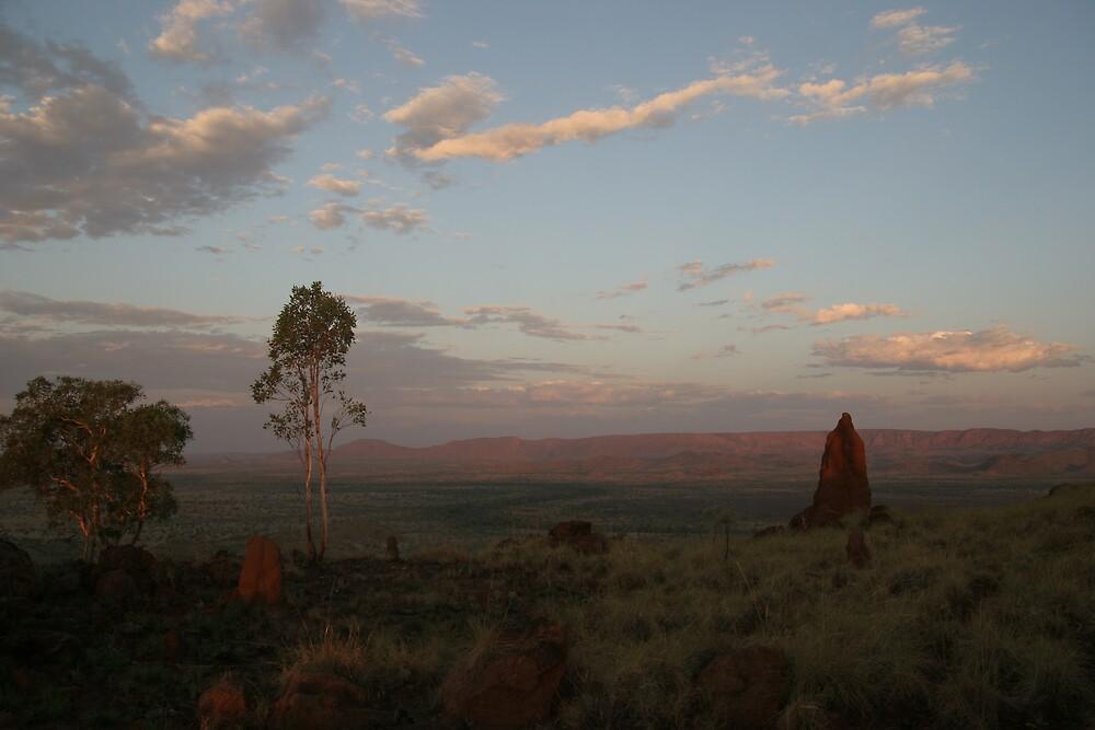 Termite Mound....Evening light by Bilgolaj