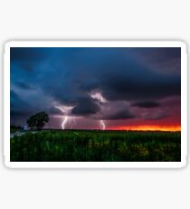 Lightning Bugs - Storm and Fireflies During a Brilliant Sunset Sticker